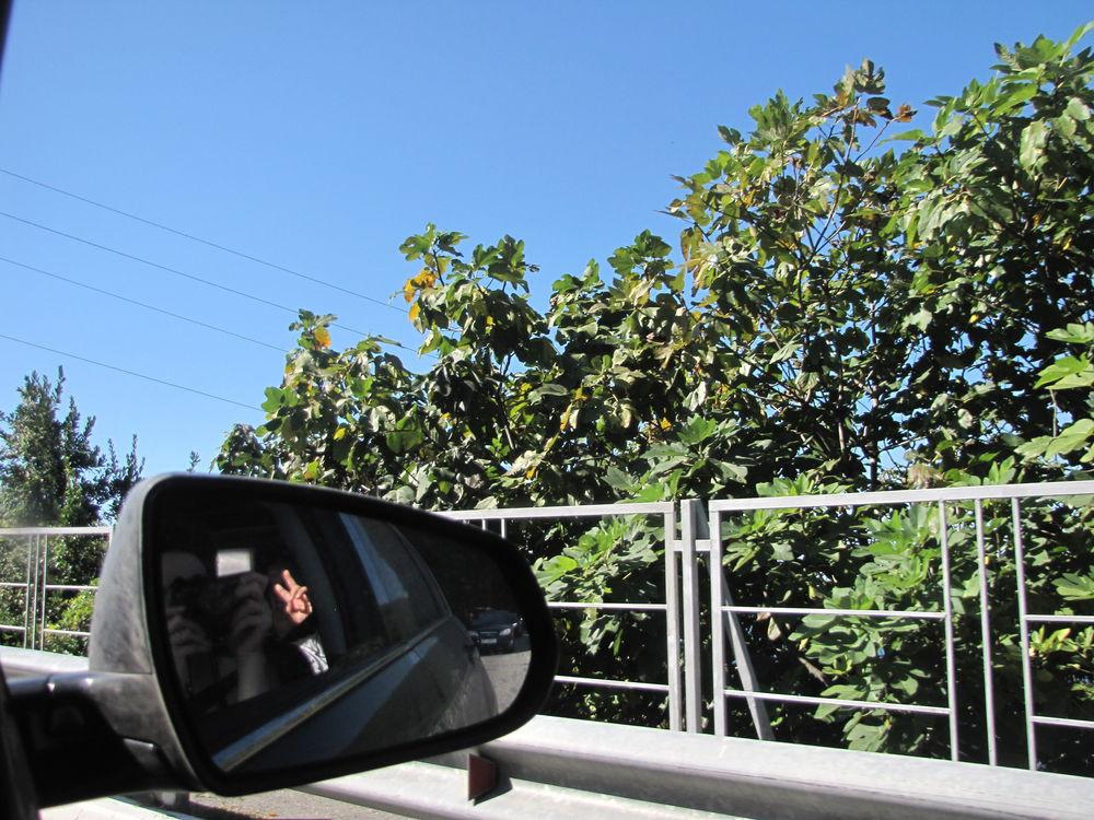 В погоню за летом или бархатный сезон (часть 3), фото № 20