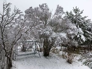 Первый снег Подмосковье!. Ярмарка Мастеров - ручная работа, handmade.