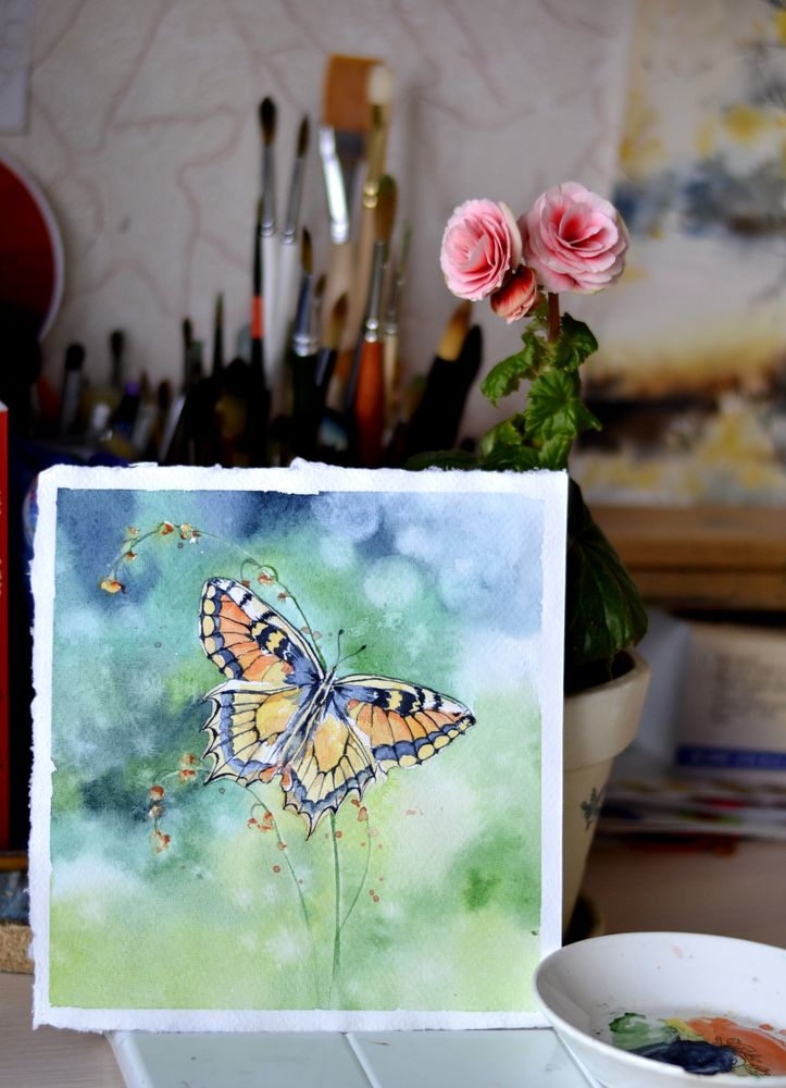 акварель, процесс, картина акварелью, бабочка, лето, весна