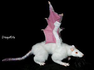 Сказка про крысу Элейн. Ярмарка Мастеров - ручная работа, handmade.