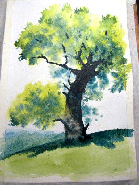 Как нарисовать дерево акварелью, фото № 21