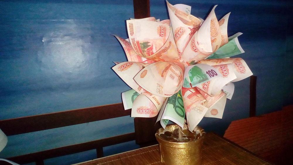 денежное дерево без клея