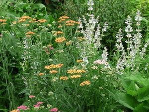 Новые цветы в саду. Готовим новинку : гобелены XXL размера.   Ярмарка Мастеров - ручная работа, handmade