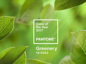 Институт Pantone назвал главный цвет 2017 года. Ярмарка Мастеров - ручная работа, handmade.
