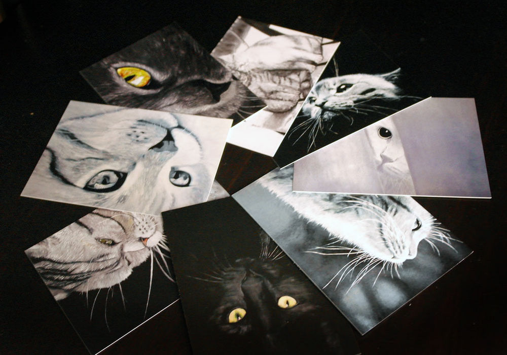 открытка, открытка с котом