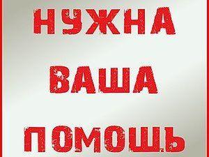 Просьба помощи и репостов у мастера Sinichka36 | Ярмарка Мастеров - ручная работа, handmade