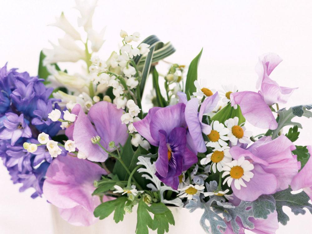 весна, красота, 8 марта, поздравление