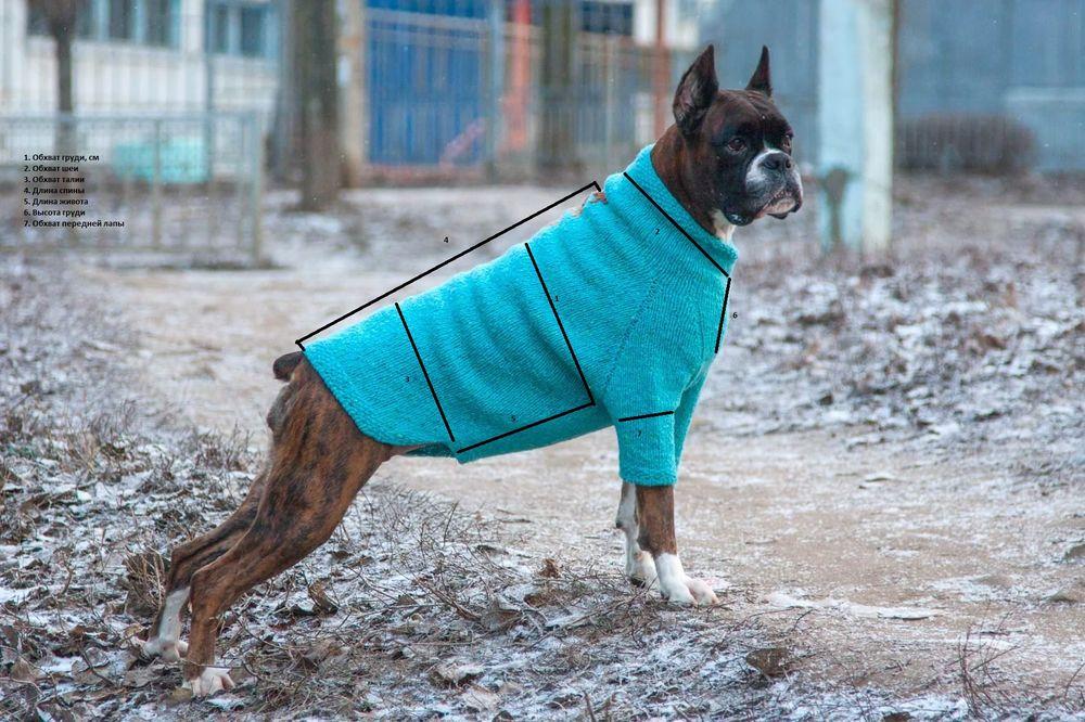 собака, свитер для собаки, вязание на заказ, снять мерки