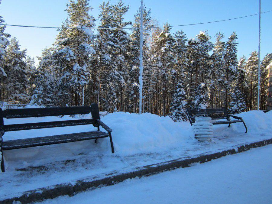 природа, зима 2014, идеи для вдохновения