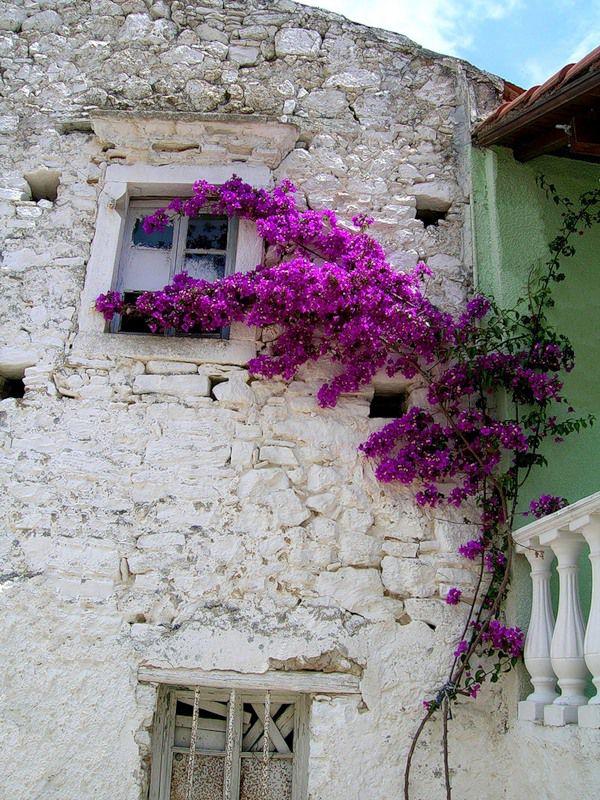 Греческий стиль в интерьере лаконичность, свобода и сдержанность цвета, фото № 27