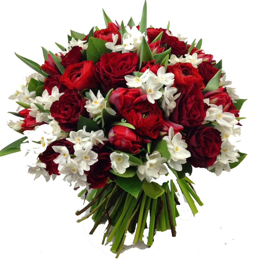 анна черных, 8 марта, блог, поздравления, цветы