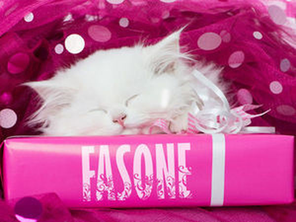 Подарки за Главную от Fasone!!! | Ярмарка Мастеров - ручная работа, handmade