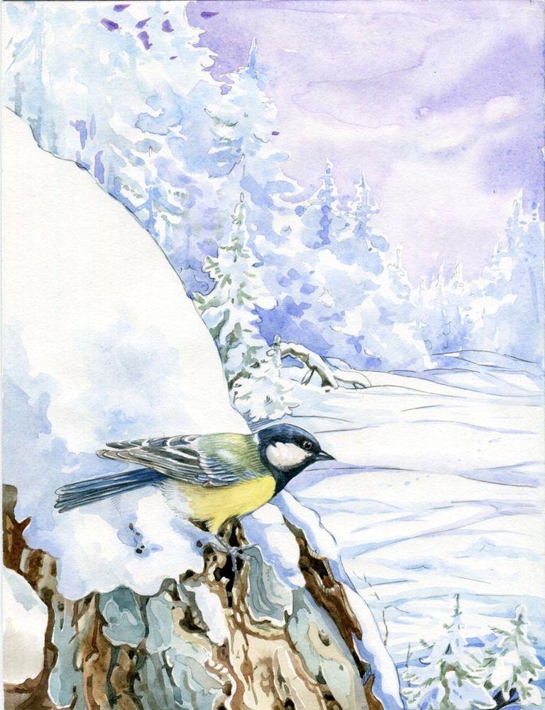 Картинки синичкин календарь бианки