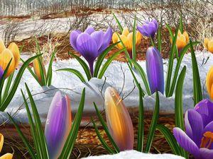 Весна кругом !!! Конкурс коллекций, щедрые подарки!!! | Ярмарка Мастеров - ручная работа, handmade
