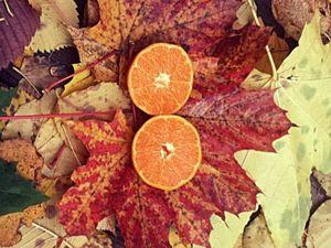Кофе осенью. Осення фотосессия. Прогулки в парке.. Ярмарка Мастеров - ручная работа, handmade.