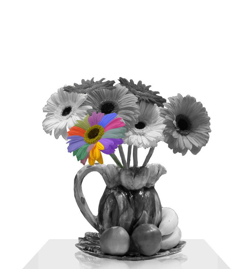 фотокартина, фотокартина цветы, черно-белый, белый фон