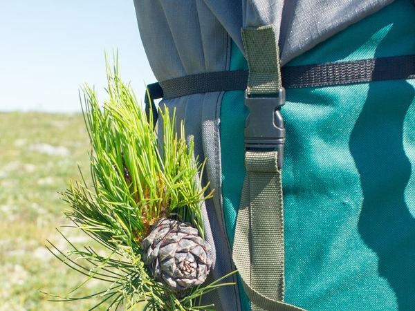 Про туристический рюкзак | Ярмарка Мастеров - ручная работа, handmade