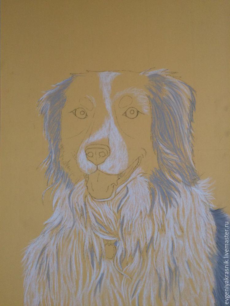 собака пастелью