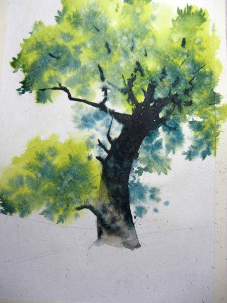 Как нарисовать дерево акварелью, фото № 17