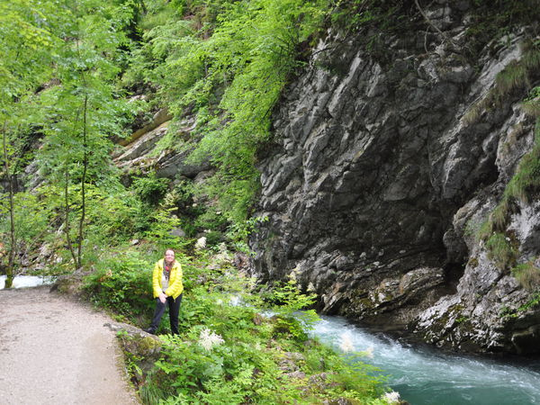 Путевые заметки-природа Словении | Ярмарка Мастеров - ручная работа, handmade