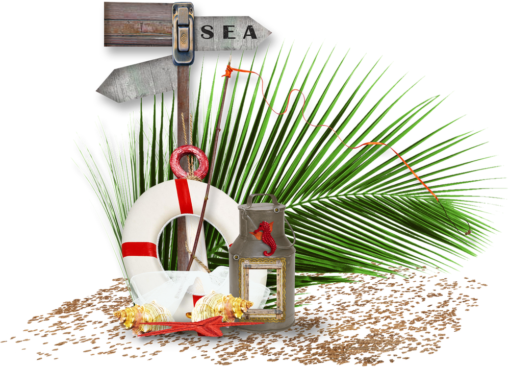 Аукцион на морской стоимость монеты 25 bani 2010