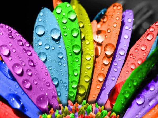 Разноцветный понедельник ;-)   Ярмарка Мастеров - ручная работа, handmade