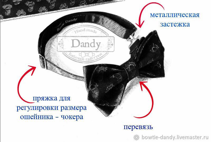 галстук-бабочка, бабочки, ликбез, что такое перевязь, что такое чокер, статичная бабочка, бабочка dandy, dandy ликбез