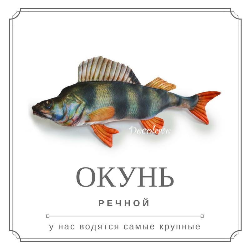 рыба подушка