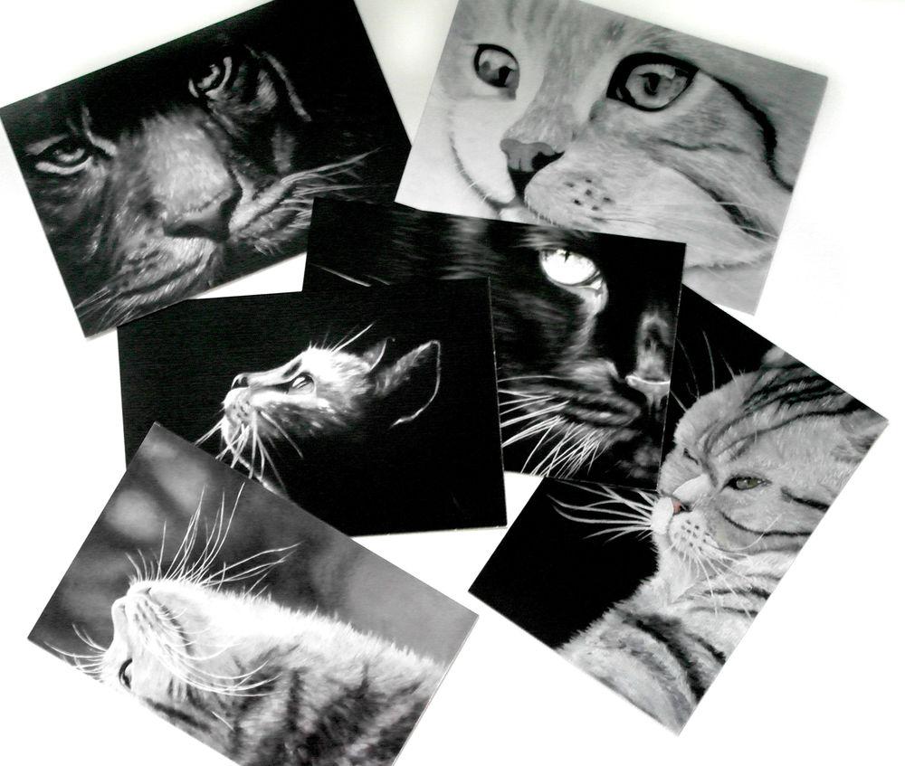 открытка с котом, подарок, postcard