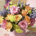 spring-flowers-new-ideas-muscari6.jpg