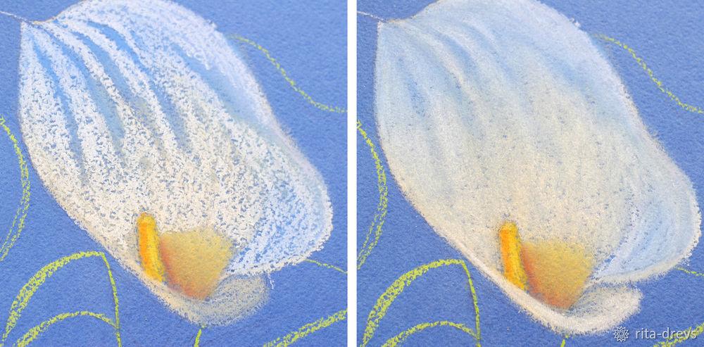 Рисуем пастелью изящный цветок каллы, фото № 7