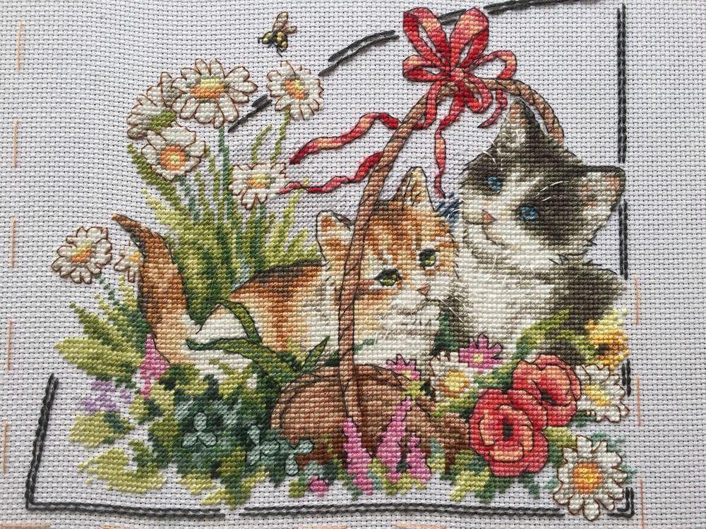 вышивка на заказ, купить вышивку, вышитые кошки