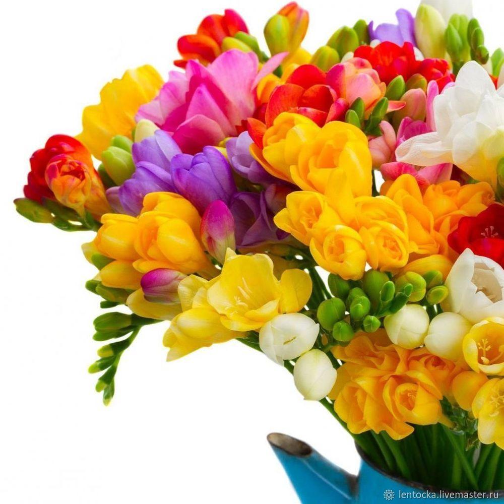 доставка цветов, ирисы, букет в подарок
