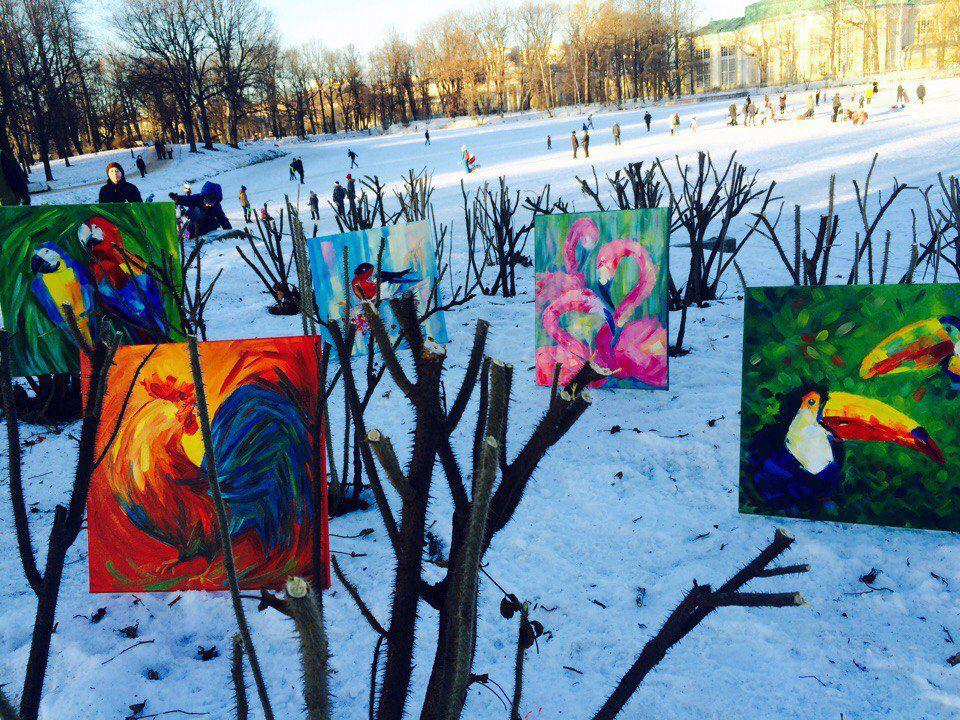 птицы, зима, попугаи, снежный город