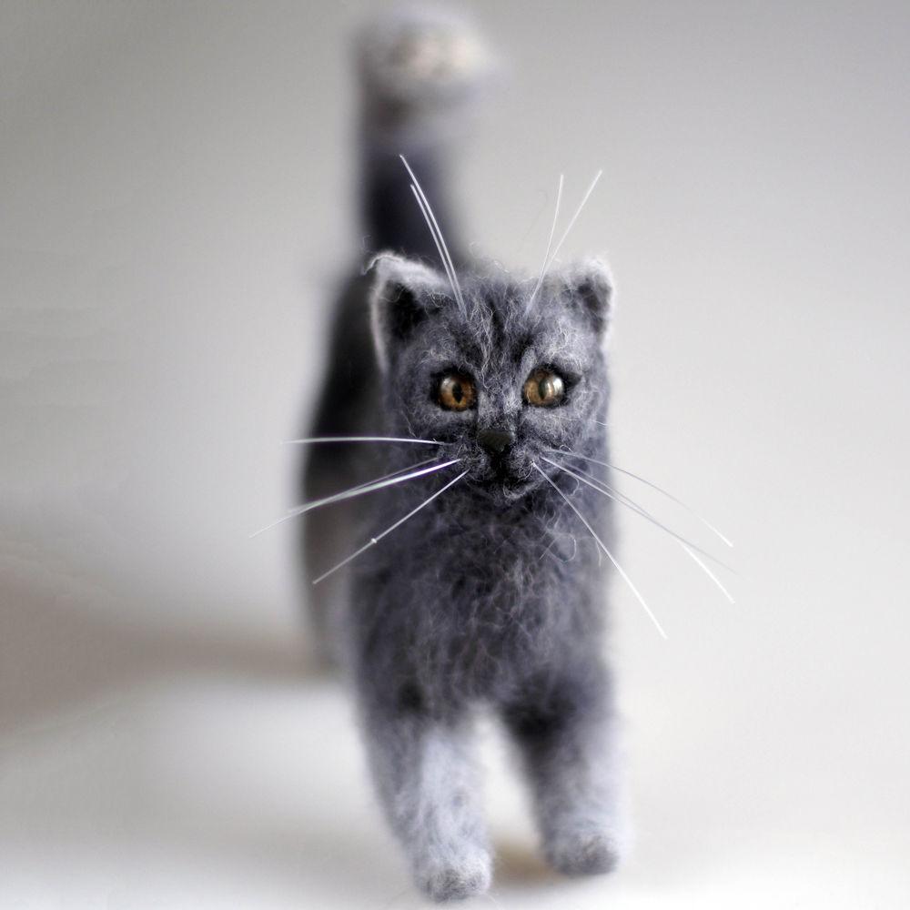 кот из шерсти