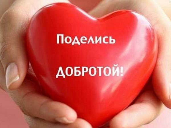 Мастер Анна Жукова просит помощи!!!!! Поддержите!!!   Ярмарка Мастеров - ручная работа, handmade