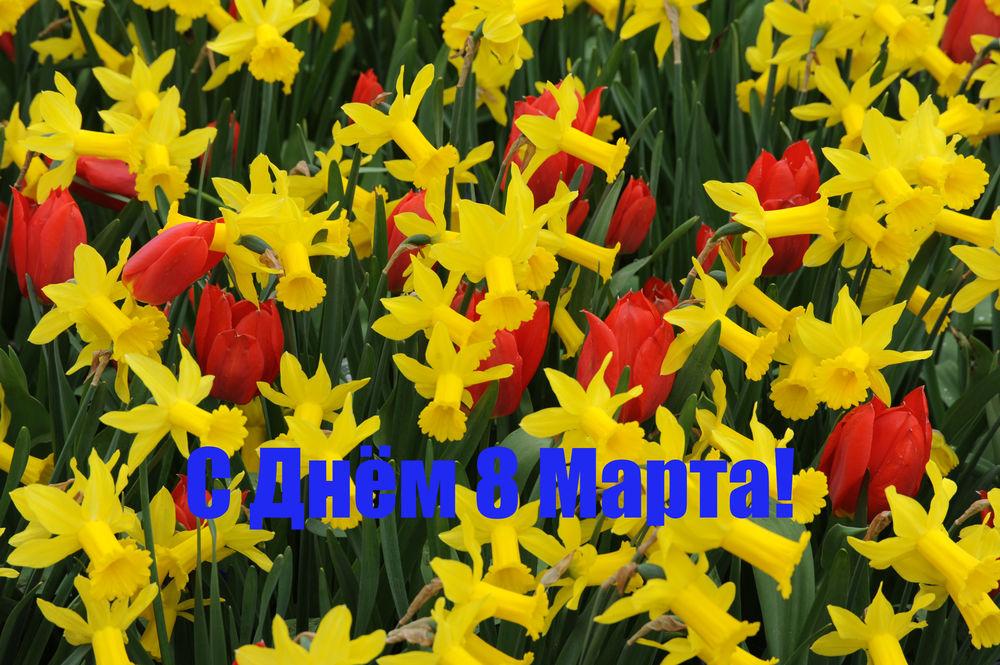 праздник 8 марта, радость, счастье, творчество