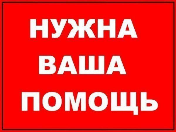 Приём работ на аукцион для мастера Танюши Степановой! Глиобластома | Ярмарка Мастеров - ручная работа, handmade