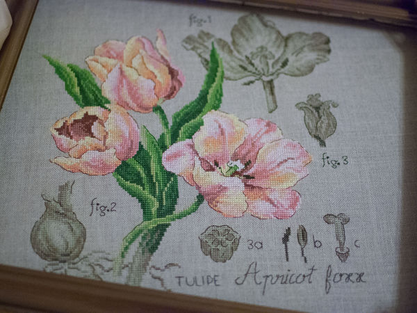 Тюльпаны   Ярмарка Мастеров - ручная работа, handmade