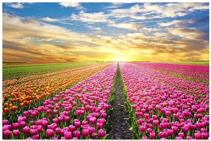 8 марта, с праздником, праздник весны, женский день, весна, цветы