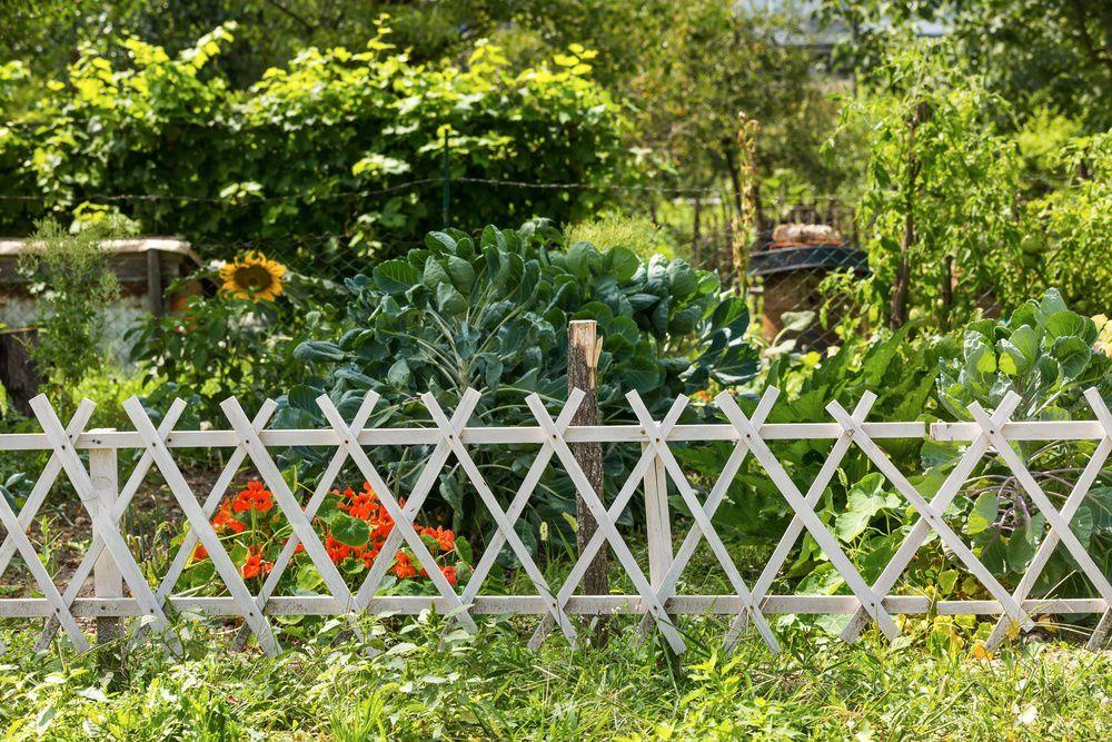 Изгородь в саду своими руками