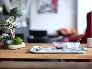 Исландский мох в интерьере. Ярмарка Мастеров - ручная работа, handmade.