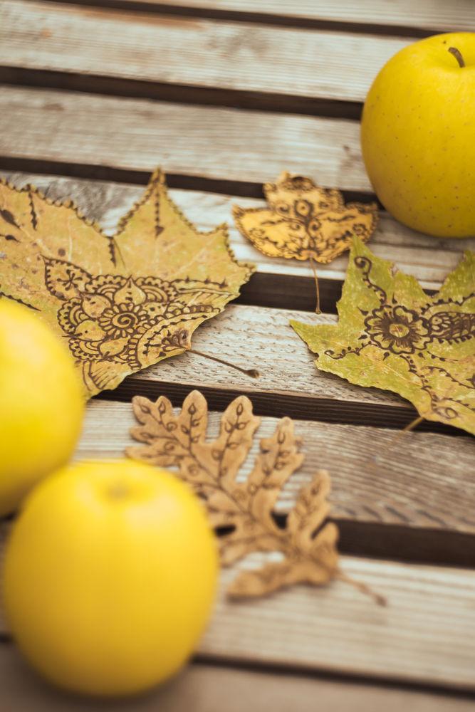Идея для вдохновения: роспись осенних листьев в стиле мехенди., фото № 1