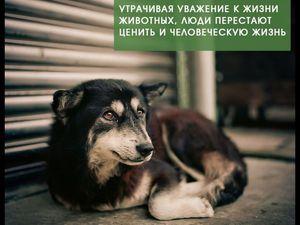 Благотворительный аукцион в помощь бездомным животным стартовал! | Ярмарка Мастеров - ручная работа, handmade