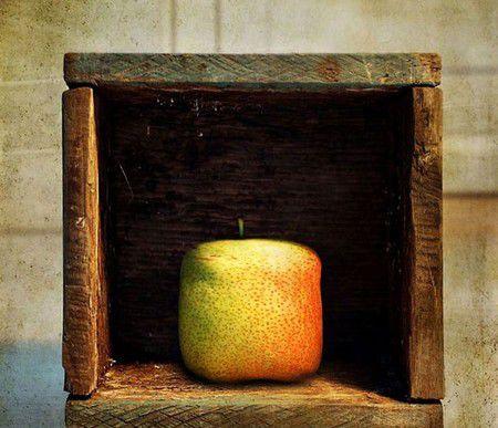 Груши тоже люди! – серия фоторабот Станислава Аристова — фото 19