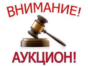 Аукцион с 1 Рубля!!!. Ярмарка Мастеров - ручная работа, handmade.