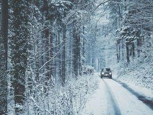 Зима не хочет отступать. Ярмарка Мастеров - ручная работа, handmade.