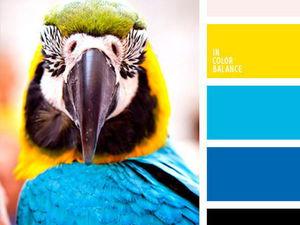 Черпаем вдохновение цветом в мире птиц. Часть 3. Ярмарка Мастеров - ручная работа, handmade.