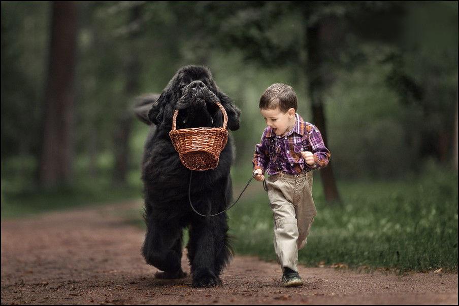 самые трогательные фото в мире что нужно