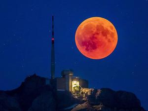 Пользователи сети выбрали лучшие снимки лунного затмения. Ярмарка Мастеров - ручная работа, handmade.